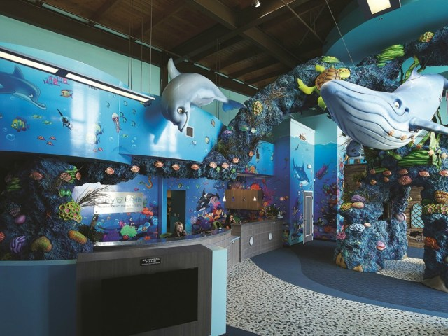 under the sea pediatric office design patterson today