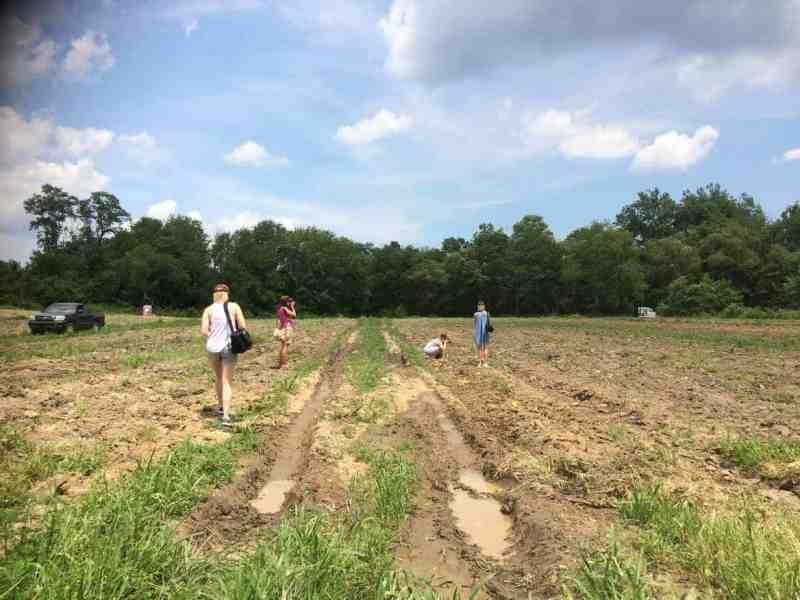 western north carolina farm tour