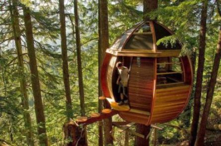 off-grid treehouse