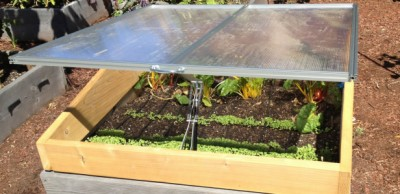 Cold Frames: The Easiest Way To Get A Jump On The Growing Season