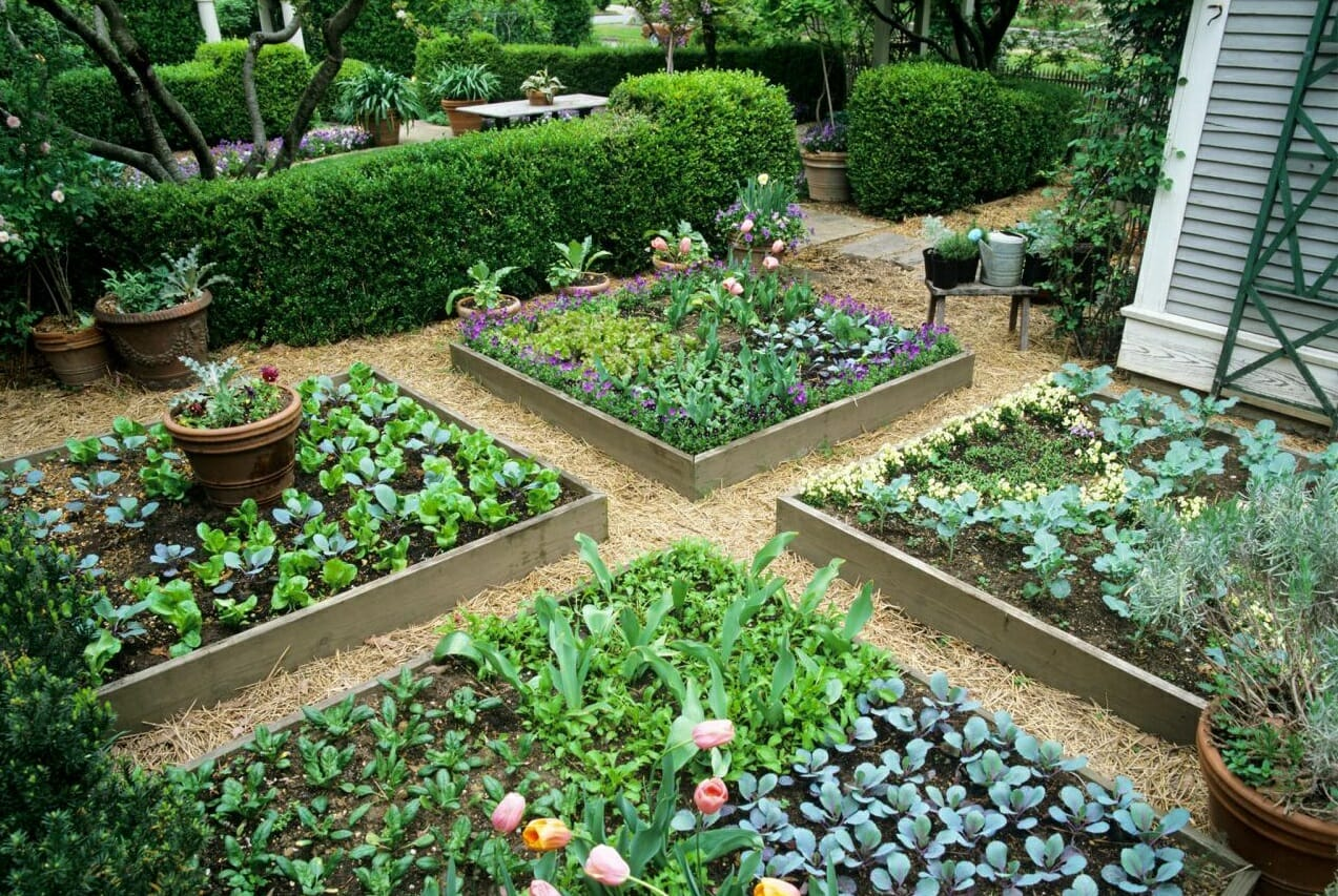 5 Low Cost Creative Ways To Build A Raised Bed Garden