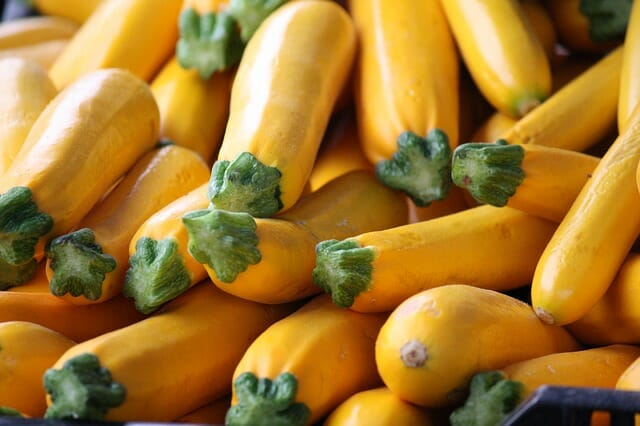 Summer Squash: The Gardening Staple You Can Grow In 40 Days