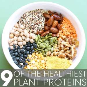 What are the best plant protein foods and just how much protein is in each? Almonds, chickpeas, quinoa, a seasoning that subs for cheese - and more!