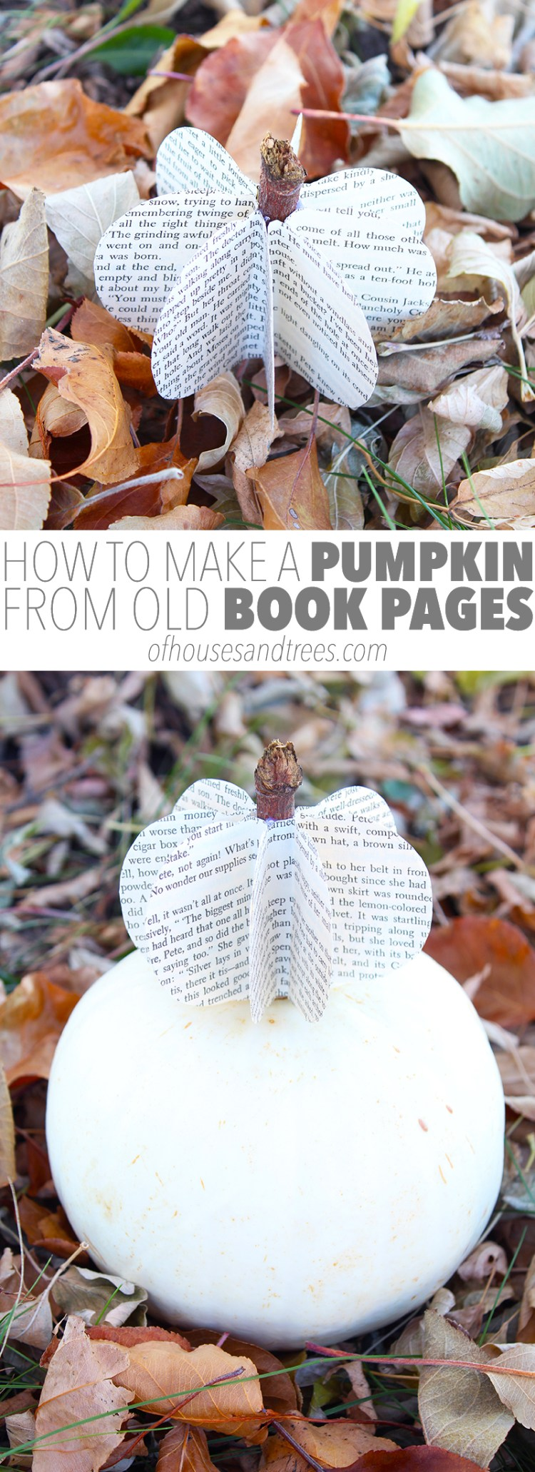 Fall is a time of colourful leaves, crisp air, harvests and... DIY pumpkin crafts! Here's how to make a pumpkin from old book pages. Happy Autumn!