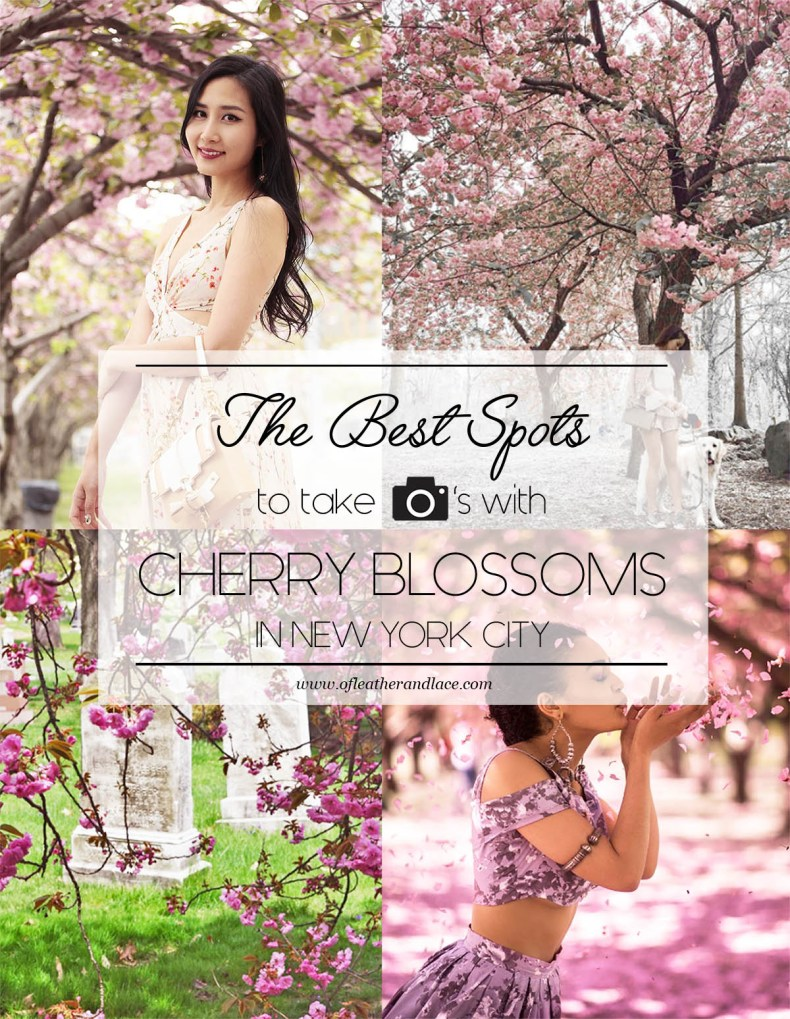 Best Spots to Take Photos with Cherry Blossoms in NYC | Of Leather and Lace | A Fashion Blog by Tina Lee