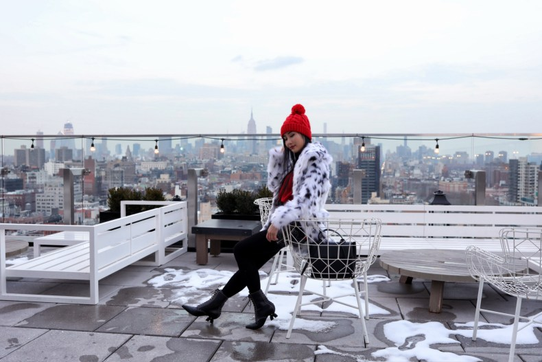 50 Bowery Hotel Rooftop View in Chinatown | in NYC | Ofleatherandlace.com