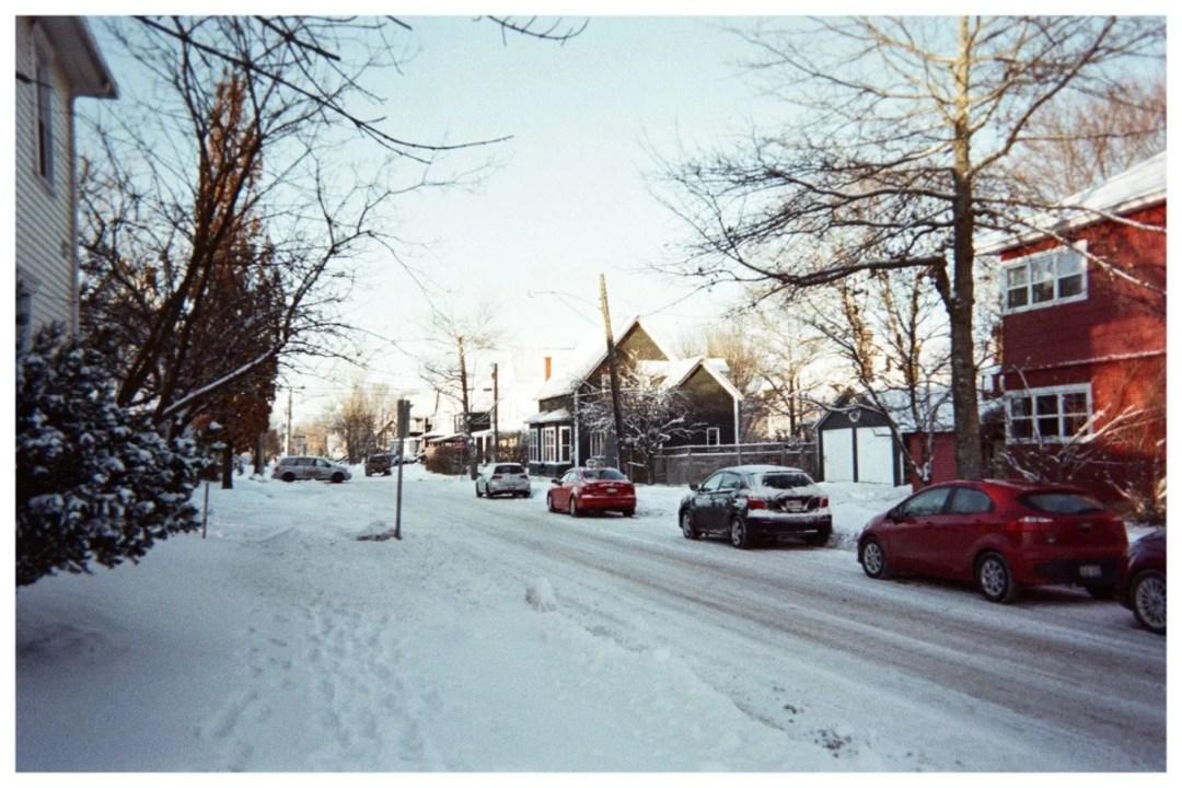 Laureline Hanout, Moncton