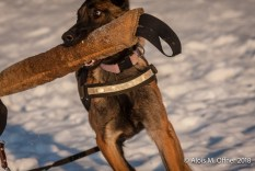 og-krumbach-trainingsbetrieb-2018-02-24-378