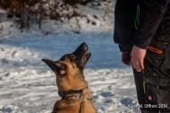 og-krumbach-trainingsbetrieb-2018-02-24-680
