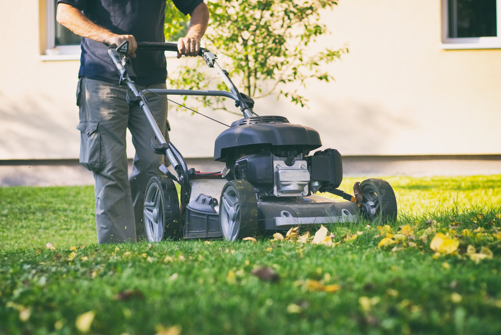6 Tips For Autumn Lawn Care In Utah Healthy You