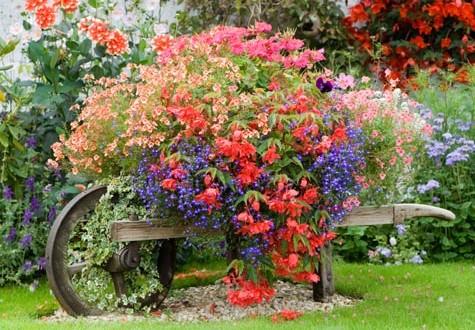 Corsi di giardinaggio  Famiglia