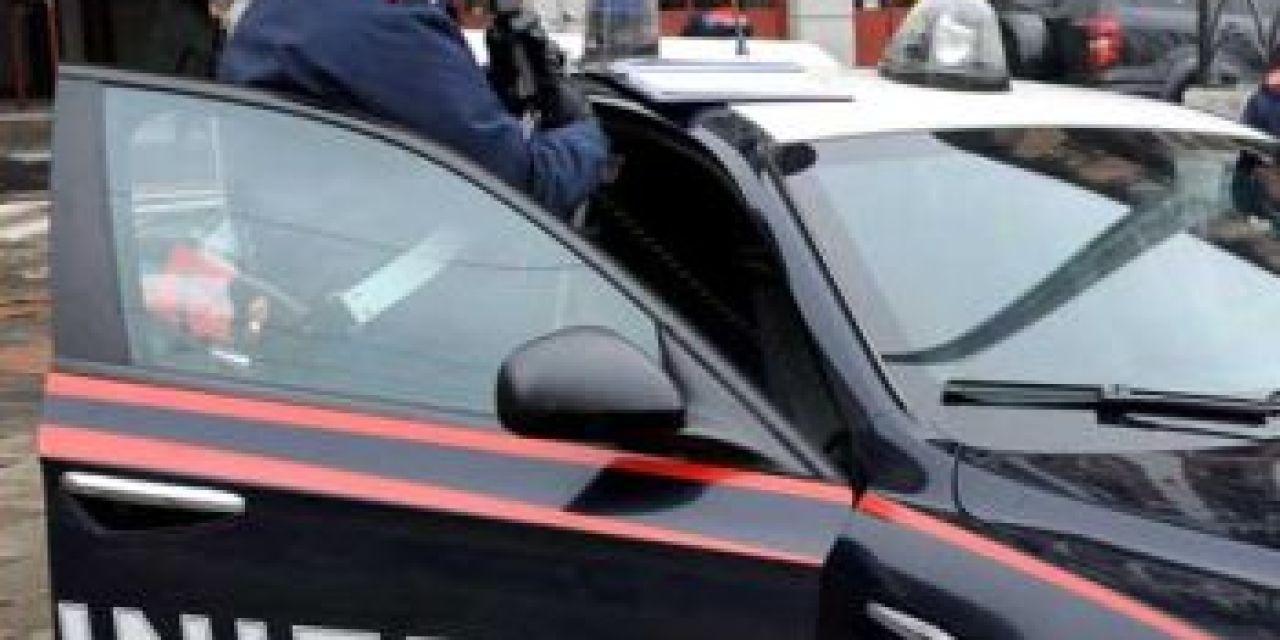 Una rumena di 45 anni picchia il proprio cane, denunciata dai carabinieri di Vignale monferrato