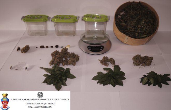 Trasforma la casa in una serra di Marijuana, arrestato a Molare