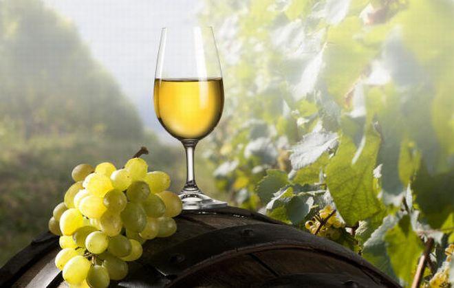 da venerdì a Domenica a casale Monferrato c'è la festa del vino