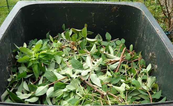 Parte la raccolta del verde nei sobborghi di Alessandria
