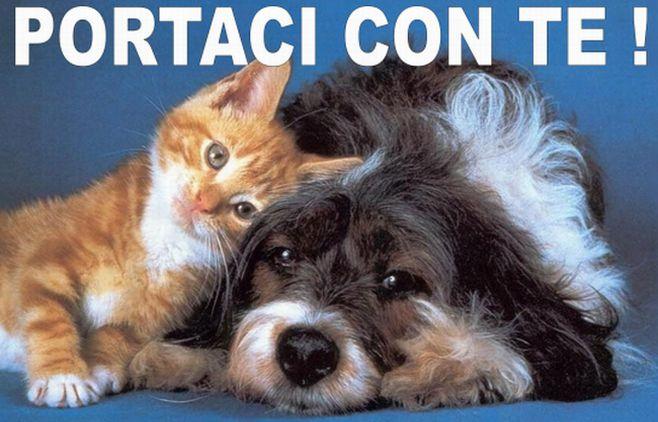 Il Comune di Tortona vara una campagna di sensibilizzazione contro l'abbandono di cani e gatti