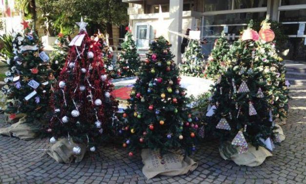 A Diano Marina feste natalizie con alberi e …..