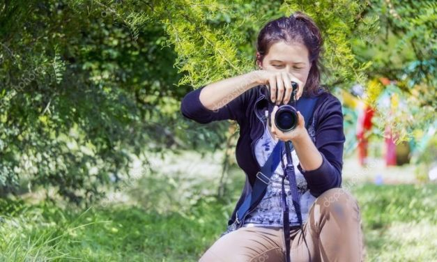 Bonus cultura per il Piemonte: da 700 fino a 1.000 euro a fondo perduto Per fotografi, guide turistiche, traduttori e operatori culturali