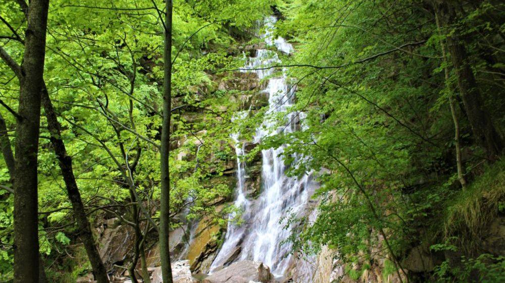 Gli appuntamenti di domenica nei Comuni del parco delle Alpi Liguri