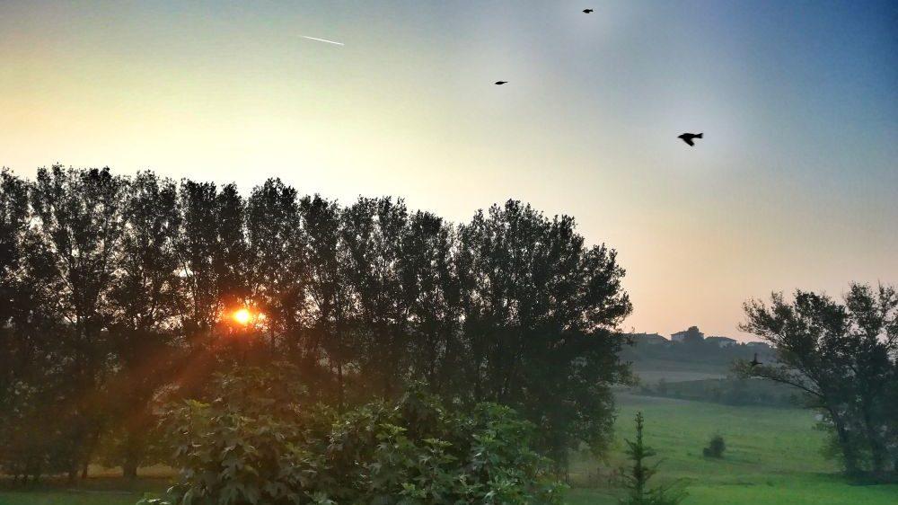 """Domenica c'è il """"Summer day"""" in Monferrato"""