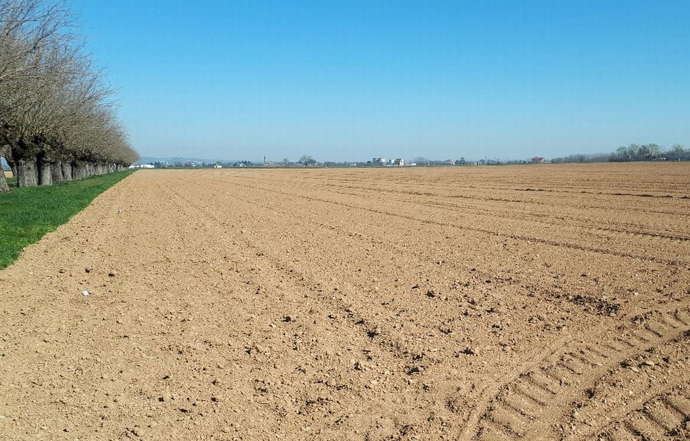 Anche in provincia di Alessandria è allarme siccità: semine primaverili in terreni aridi senza'acqua