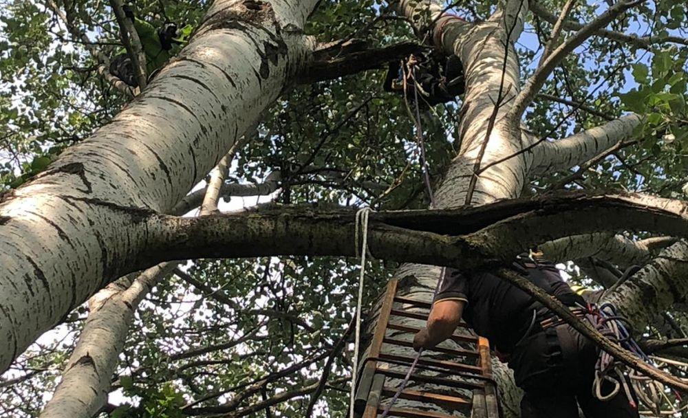 Fa parapendio e si schianta contro un albero in val Curone, rimanendo illeso. Salvato dai pompieri. Le immagini