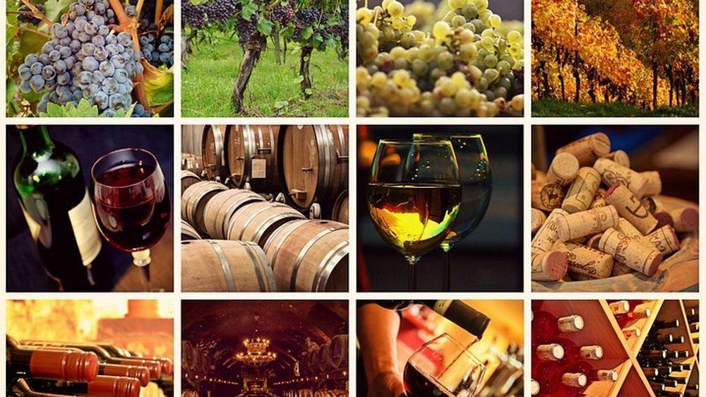 Il programma della festa del Vino a Casale Monferrato che inizia venerdì