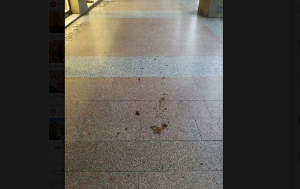 Padroni dei cani immerdano i portici di Tortona, il salotto buono della città. Pulire no?