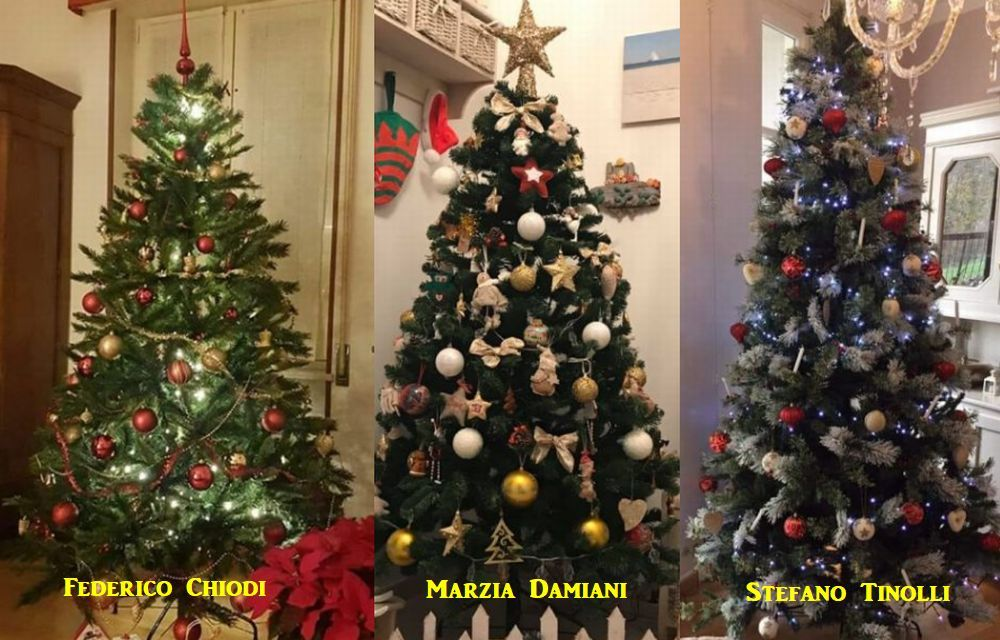 Il Sindaco Federico Chiodi vince il concorso sugli alberi di Natale, seconda Marzia Damiani