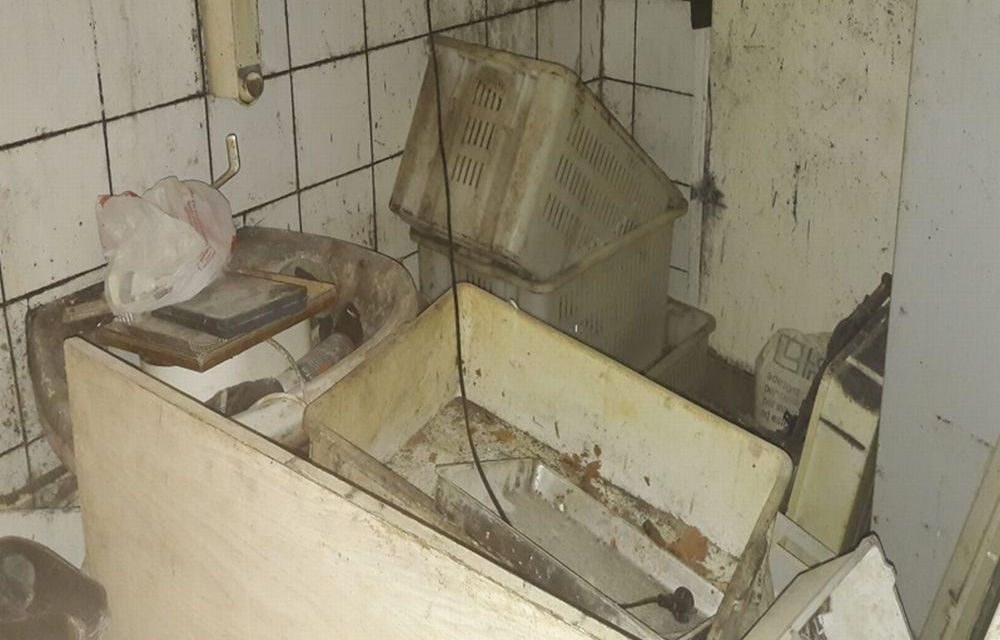 Imperia. Operazione Alto Impatto. Scovato un laboratorio abusivo di panetteria con questo schifo: sospesa l'attività.