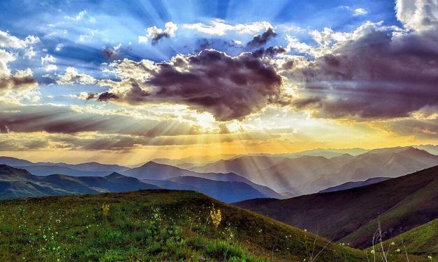 Il 5 giugno è stata la Giornata Mondiale dell'Ambiente. Di Giulia Quaranta Provenzano