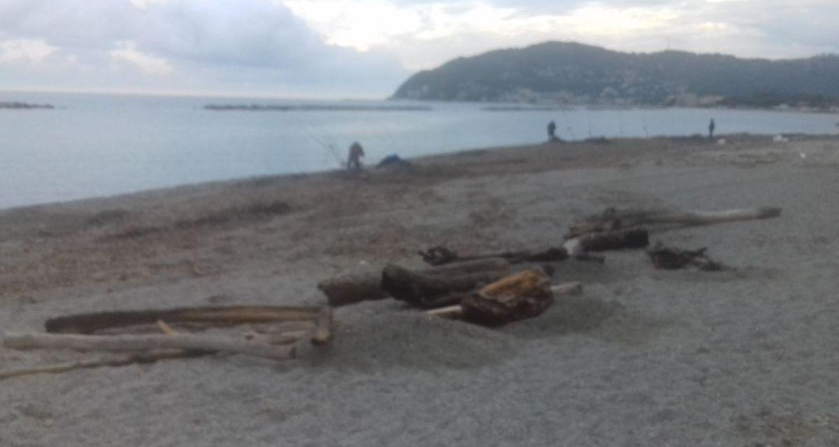 A San Bartolomeo si può raccogliere la legna sulla spiaggia