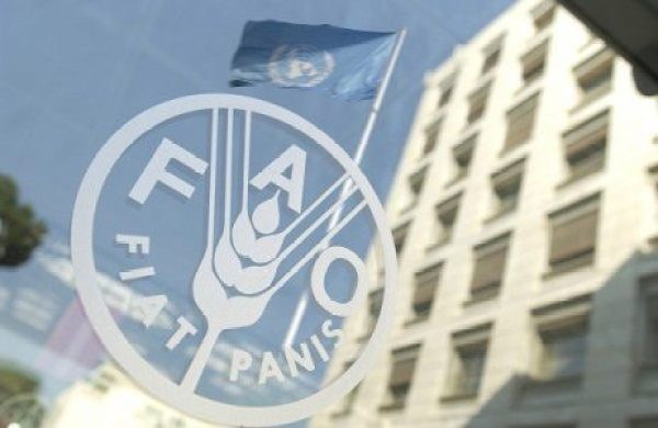 FAO Introduces New Tool for Measuring Water Usage in Agriculture