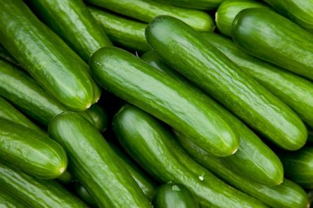 How To Start Cucumber Farming In Nigeria And Make It Big