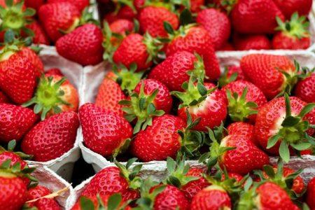 Tips on Farming Strawberries