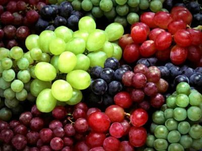 The Power of Grape