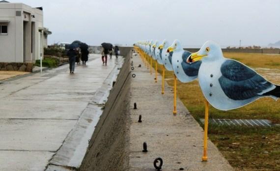 Seagull's Parking Lot sur Megijima