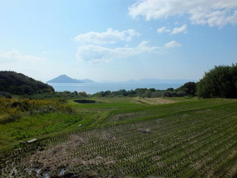 Big Bambu - Teshima - 02