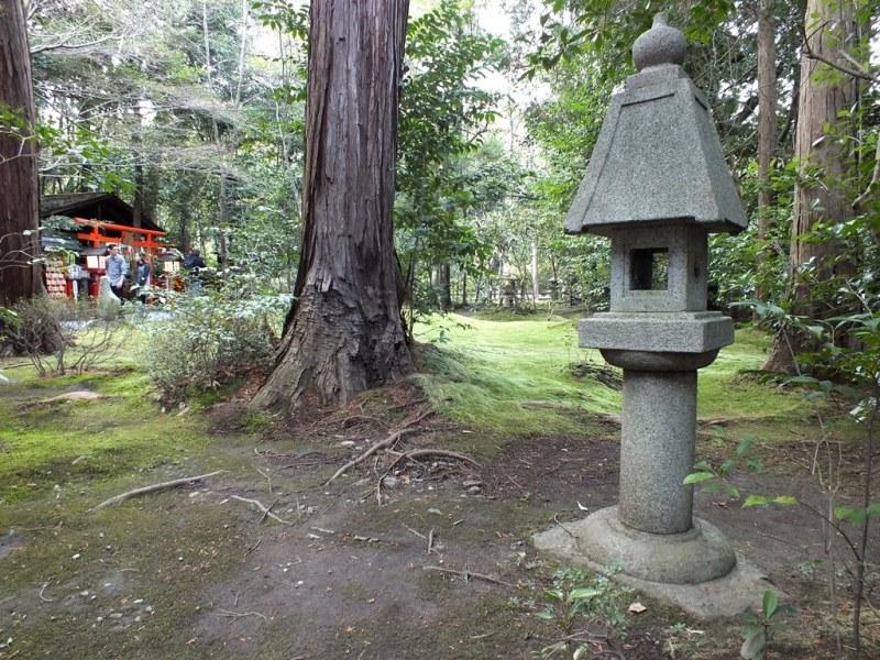 Bambous Arashiyama - 5 - Nonomiya