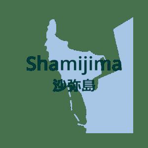 Shamijima 500