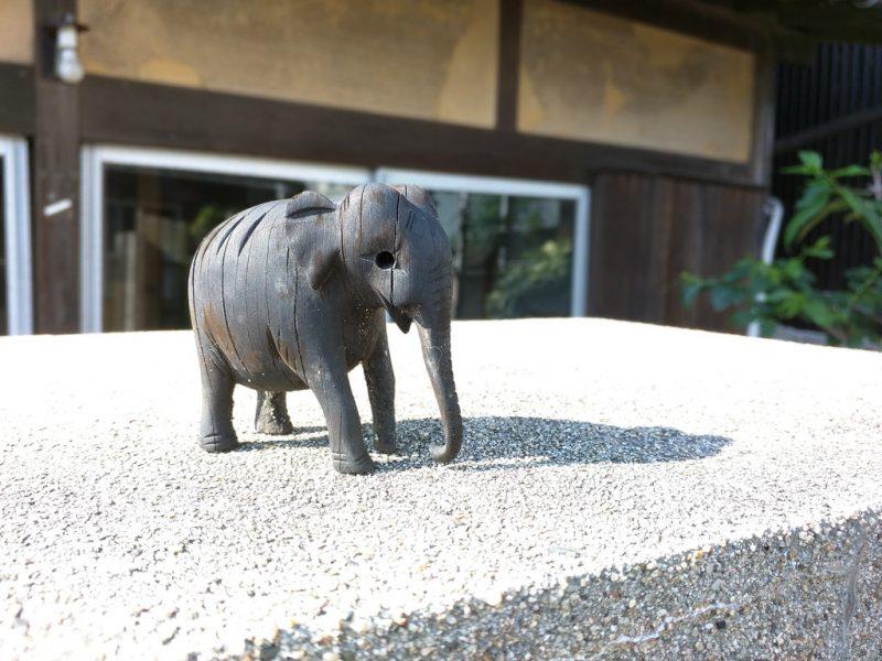Elephant devant PSS40