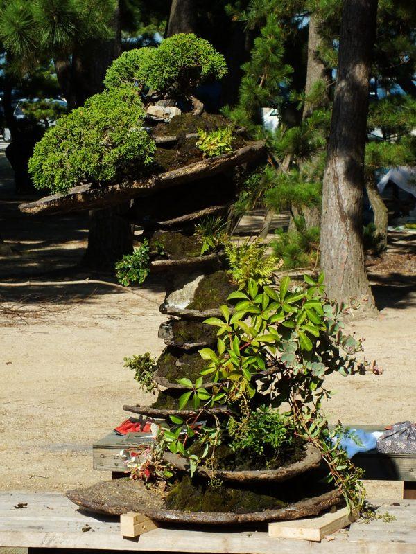 Seppuku Pistols Vs Masashi Hirao on Megijima - 22