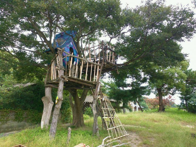 Cabane dans un arbre sur Megijima