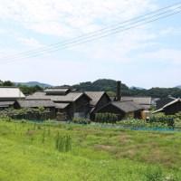 Triennale de Setouchi - Huitième Partie - Balade dans Umaki sur Shodoshima