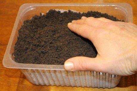 रोपाई के लिए मिट्टी