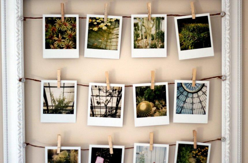Балық аулау желісіндегі орналасу фотосуреті