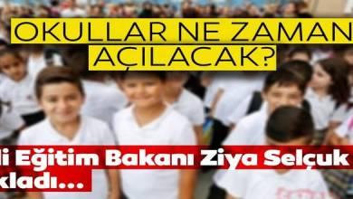 Photo of Bakan SELÇUK Merak Edilen Soruları Cevapladı