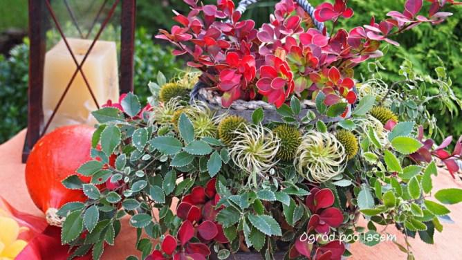 Ogrodowe dekoracje