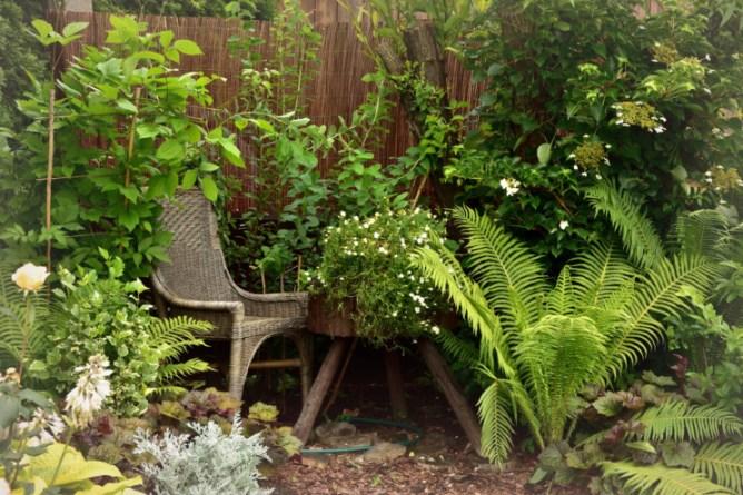 Leśny zakątek w ogrodzie