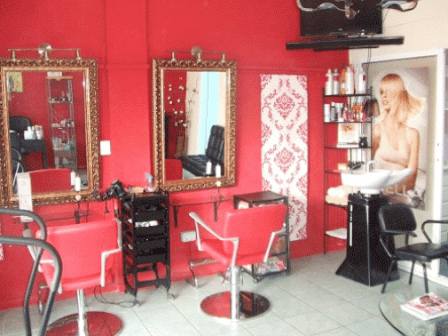 How to write a salon business plan sample and template for A beauty salon business plan
